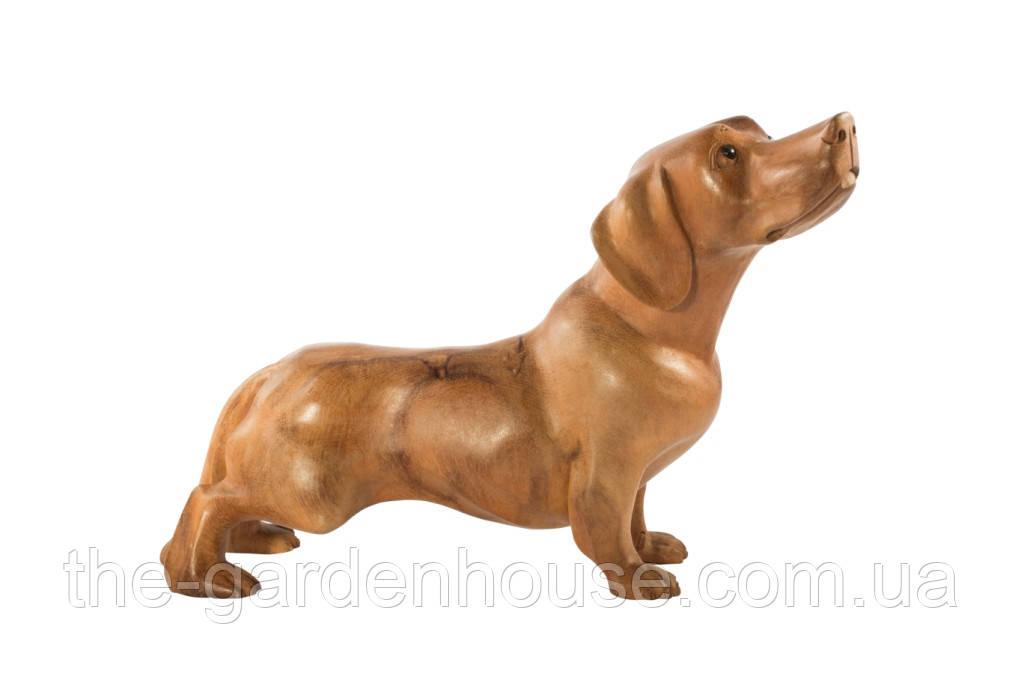 "Статуэтка собаки ""Такса"" 35 см"