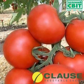 Кристал F1 (Clause) 1 г — томат ранний, круглый, индетерминантный., фото 2