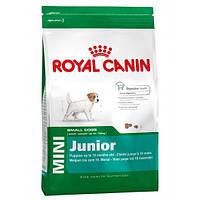 Сухой корм Royal Canin Mini Junior для щенков мелких пород до 10 месяцев 800 г