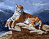 Набор-раскраска по номерам Тигр на рассвете худ. Рейбел Реймонд