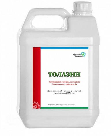 Гербицид Толазин (ПримекстраTZ Голд), фото 2