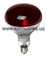 Лампа инфракрасная IR R125 красная (175 W)
