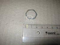 Нажимная часть (пр-во Bosch) F00RJ04104