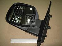 Зеркало левый REN KANGOO 09- (Производство TEMPEST) 0410469407, AEHZX