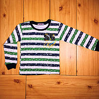 Детская футболка с длинным рукавом для мальчика рр. 98-128 Beebaby (Бибеби)