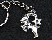 """Брелок для ключей знаки зодиака """"Козерог"""""""