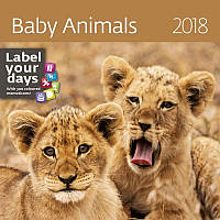 Календарь настенный Helma 2018 Baby Animals 30x30