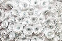 3D фотообои: Белые цветы