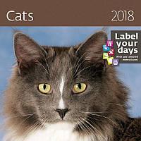 Календарь настенный Helma 2018 Cats 30x30