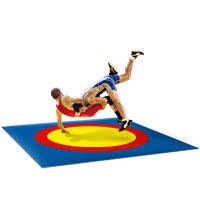 Борцовский ковер с олимпийскими кругами 12м*12м