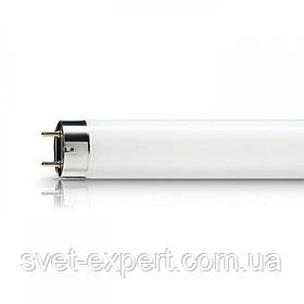 Лампа OSRAM L 36W/830 LUMILUX G13 люмінесцентна трубчаста (Покращена передача кольору)