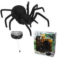 Большой паук Черная вдова на радиоуправлении