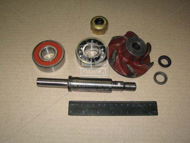 Ремкомплект насоса водяного 245-1307010-А и их модификаций (производство БЗА) (арт. Р/К-4), AEHZX