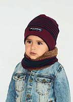 Детская зимняя шапка (набор)  для мальчиков РЕМБРАНТ оптом размер 48-50-52
