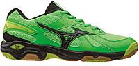 Волейбольные мужские кроссовки Mizuno Wave Eruption X1GA156009