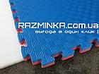 Мат татами ласточкин хвост 20мм (Турция), красно-синий, фото 3