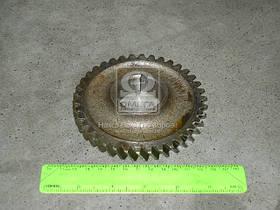 Шестерня привода насоса масляного Д 240, 243, 245 Z=42 (производство Беларусь) (арт. 240-1005033-01), AEHZX