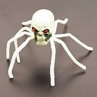 Паук-череп (белый) 181017-010
