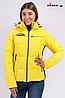 Купить женскую горнолыжную куртку Avecs limon