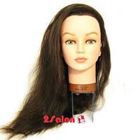 Голова учебная  Sibel Jenny 45-60 см темно-коричневый, фото 1