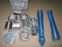 Ремкомплект шкворня DAF 65,75,85CF,95XF,XF95 на ось (RIDER), AGHZX