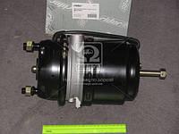 Энергоаккумулятор 24/24 DAF (RIDER) RD 019254, AGHZX