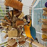 Іграшка для папуги (Кокосові джунглі) L, фото 3