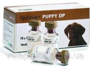 В-на Nobi-vac puppy