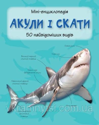 Акули і скати. 50 найвідоміших видів