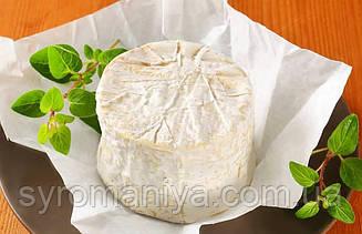 Закваска,фермент + цвіль для сиру Chaource