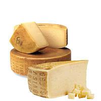 Закваска для сыра Монтазио (Montasio)