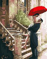 """Картина по номерам """"Долгожданная встреча"""" 40*50см"""