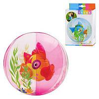 Мяч 58031 (24шт) аквариум, 61см, 2 цвета(розовый,голубой), в кор-ке, 19-13-3см