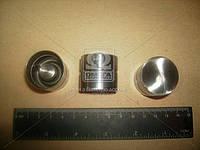 Гидротолкатель клапана комплект 16 шт (Производство АвтоВАЗ) 21120-100730086, AGHZX