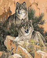 """Картина по номерам """"Пара волков"""""""