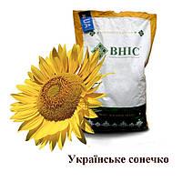 Насіння  соняшнику Українське Сонечко/ ВНІС/(2016 р) Семена подсолнуха Украинское солнешко