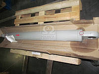 Гидроцилиндр подъема стрелы (13.6150.000) Борекс, ЭО-2621 (Производство Гидросила) МЦ110/56х1120-3.11, AHHZX