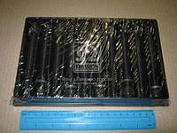 Болт головки блока (комплект) SEAT/Volkswagen 1.3/1.4/1.6 ADX/AEX/AEE/ABU/AEA (производство PAYEN) (арт. HBS075), rqc1