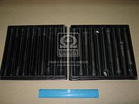 Болт головки блока (комплект) Mercedes-Benz (MB) OM616 (производство PAYEN) (арт. HBS045), rqb1
