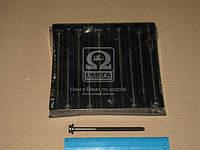 Болт головки блока (комплект) VAG BAG/BLF/BLP (производство PAYEN) (арт. HBS249), rqc1
