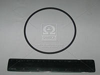 Кольцо 100-106-36-2-2 (производство Беларусь)