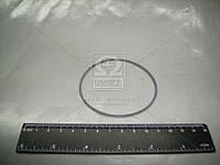 Кольцо уплотнительное подшипника полуоси (Производство БРТ) 2101-2401065Р