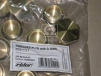 Резьбовая пробка с уплотнительным кольцом M 22x1.5 F M16x1.5 (RIDER) RD 99.01.93
