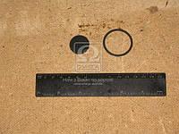 Р/к клапана двухмагистрального (пр-во ПААЗ) 100.3562009