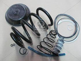 Ремкомплект энергоаккумулятора тип 24 (Производство г.Рославль) 100.3519209, AFHZX