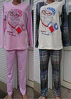 Женская теплая пижама с рисунком сов 42-52 р, женские пижамы оптом от украинского производителя