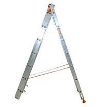 Лестница универсальная Budfix 3х8, фото 3