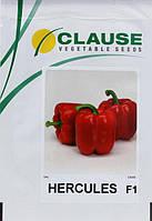 Семена Перец  Геркулес F1, 50 граммов Clause