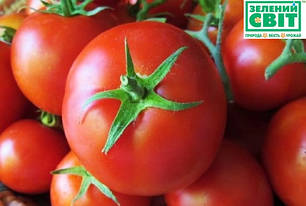 Томат Линда F1, 1000 сем. — семена детерминантного, крупноплодного томата, фото 2