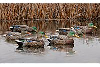 Чучела уток Avian-X Early-Season Mallard Decoys